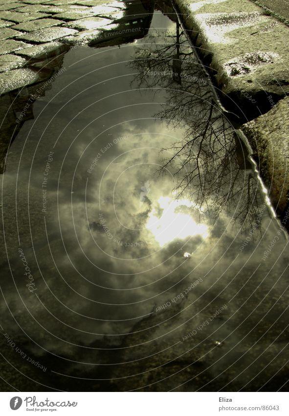 Irgendwo am Straßenrand Wasser Himmel Baum Sonne grün Haus Wolken Herbst Stein Regen Stimmung Wetter nass Schilder & Markierungen Hoffnung