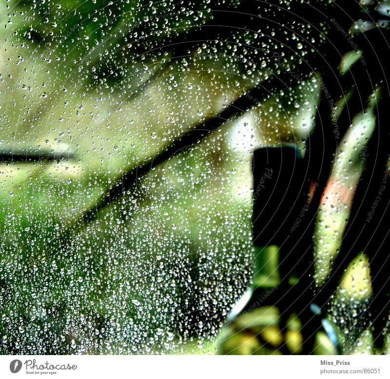 Tropfen in grün Weinflasche Stillleben dezent Trauer Hoffnung unklar unbestimmt schön Regen Flasche Traurigkeit