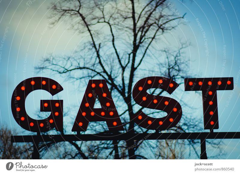 dein Gast Gastronomie Wort Typographie Wolkenloser Himmel Frühling Baum Prenzlauer Berg Leuchtkörper leuchten Freundlichkeit retro seriös Stimmung Geborgenheit