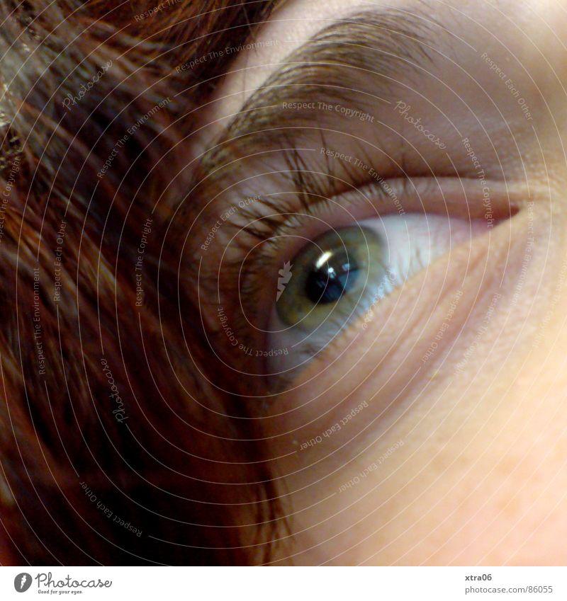 wo sieht sie hin? Frau grün verträumt ruhig Aussehen bewachen Augenbraue Blick heften Gesichtsausschnitt Haare & Frisuren grüne augen augenlicht Mensch