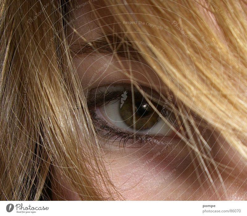 Auge Pupille Schminke schön attraktiv Makroaufnahme Nahaufnahme Haare & Frisuren eye hair Nase eyeliner Wimpern