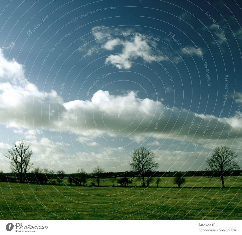 SchönWetter2 schön Sommer Frühling Pol- Filter Feld Wiese Meteorologie Sträucher Himmel Sonne Schönes Wetter Blauer Himmel Amerika Landschaft Klima