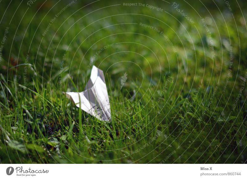 Musik liegt in der Luft / Wiese Basteln Kinderspiel Musiknoten Gras fliegen Notenblatt Symbole & Metaphern Papierflieger Origami Bruchlandung Sturz Farbfoto