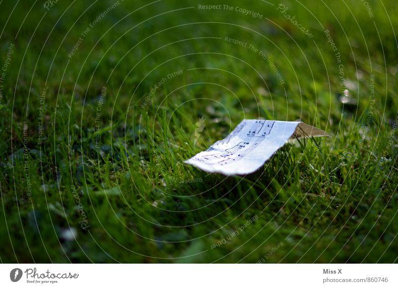 ein leises Liebeslied Musik Musiknoten Gras Wiese Papier Zeichen Gefühle Stimmung Verliebtheit träumen Sehnsucht Lied Notenblatt Leichtigkeit Farbfoto