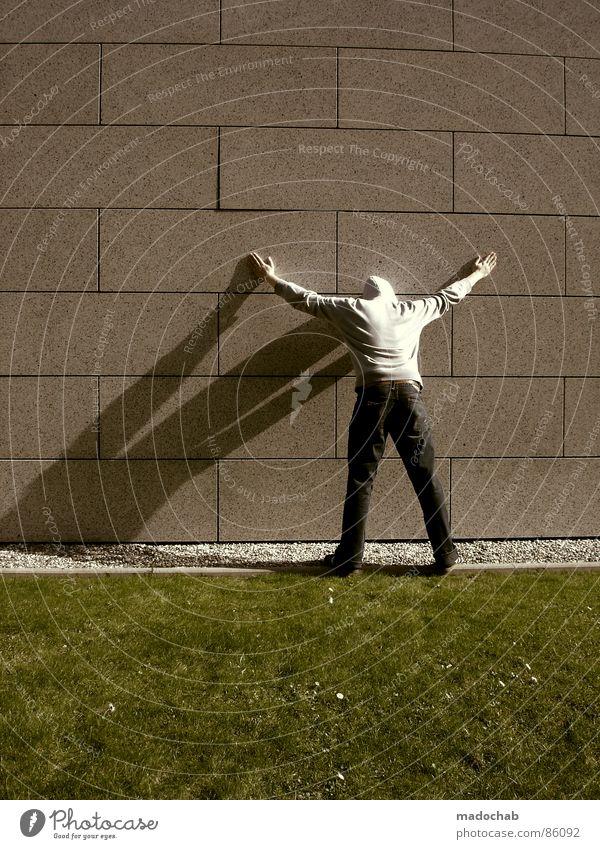 ADLER MACHEN Mensch Natur Mann alt grün Hand Wand Wiese Gras Hintergrundbild Mauer Spielen grau Stein Linie Ordnung