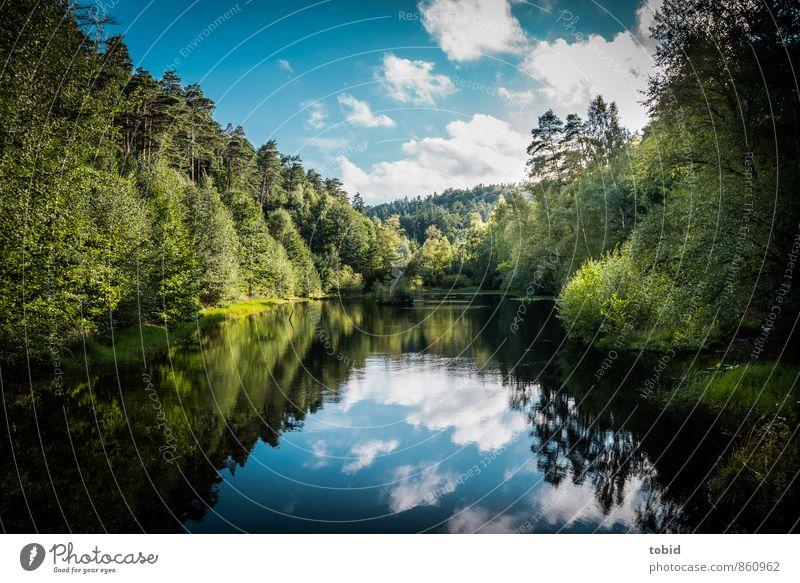 Stiller See Himmel Natur Ferien & Urlaub & Reisen blau Pflanze grün Wasser Sommer Sonne Baum Landschaft Wolken Ferne Berge u. Gebirge Gras Freiheit