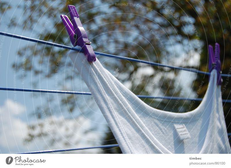 Opas bestes Himmel Sommer weiß Wärme Garten Linie Perspektive Bekleidung Seil Sauberkeit Reinigen violett Physik unten Handwerk Wäsche waschen