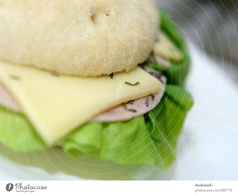 Flaguette II Kümmel Brot Brötchen Baguette Belegtes Brot Frühstück frisch Brotbelag Salatblatt Schinken Wurstbrot Mahlzeit Weißbrot Bagel Mittagessen