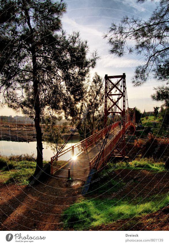 Rusty Gate Bridge Natur blau alt Stadt grün Sommer Baum Blatt schwarz Umwelt Gras Architektur braun Metall Park Sträucher