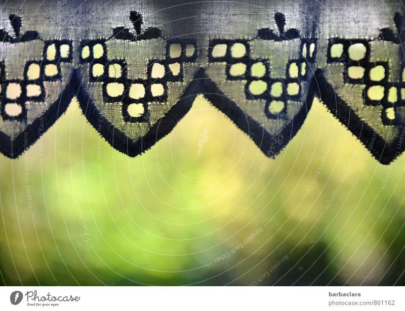 Auslaufmodell | Spitzengardine Häusliches Leben Wohnung Dekoration & Verzierung Garten Fenster Gardine hängen grün Romantik Schutz Stil Zufriedenheit Farbfoto