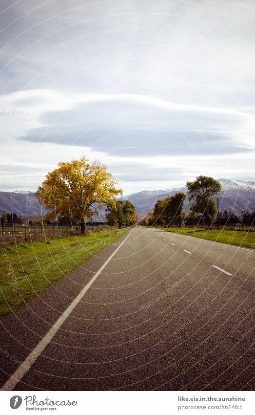 einfach mal raus. Natur Ferien & Urlaub & Reisen schön Baum Erholung Einsamkeit Landschaft Ferne Umwelt Berge u. Gebirge Straße Herbst Gras natürlich