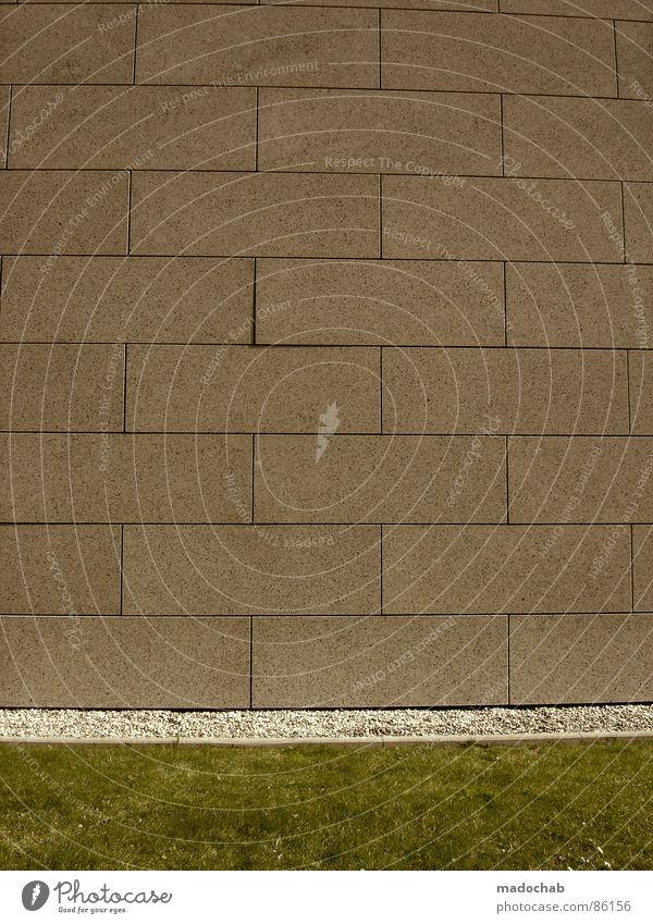 ZWEITER STREICH Natur grün Wand Architektur Wiese Gras Hintergrundbild Mauer Spielen grau Stein Linie Ordnung Dekoration & Verzierung trist leer