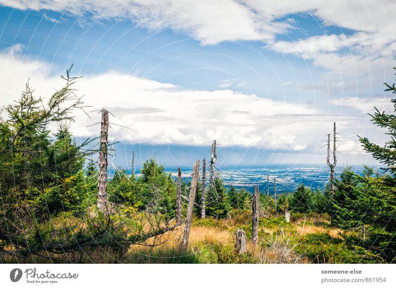 Auf Augenhöhe mit den Wolken Fahrradfahren wandern Landschaft Luft Himmel Regen Baum Berge u. Gebirge ästhetisch Ferne blau ruhig Zufriedenheit Unendlichkeit