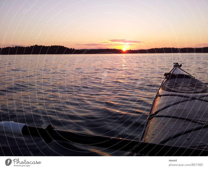 Ruhe über Wasser Ferien & Urlaub & Reisen Tourismus Ausflug Freiheit Expedition Sommer Sonne Kajak Natur Landschaft Sonnenaufgang Sonnenuntergang Küste Ostsee