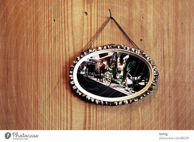 Die guten Jahre der Anderen 1 Ferien & Urlaub & Reisen Freude Kunst Freizeit & Hobby Fotografie warten Ausflug stehen Pferd Geschirr Österreich Wien Bilderrahmen Kunsthandwerk Wandtäfelung Pferdekutsche