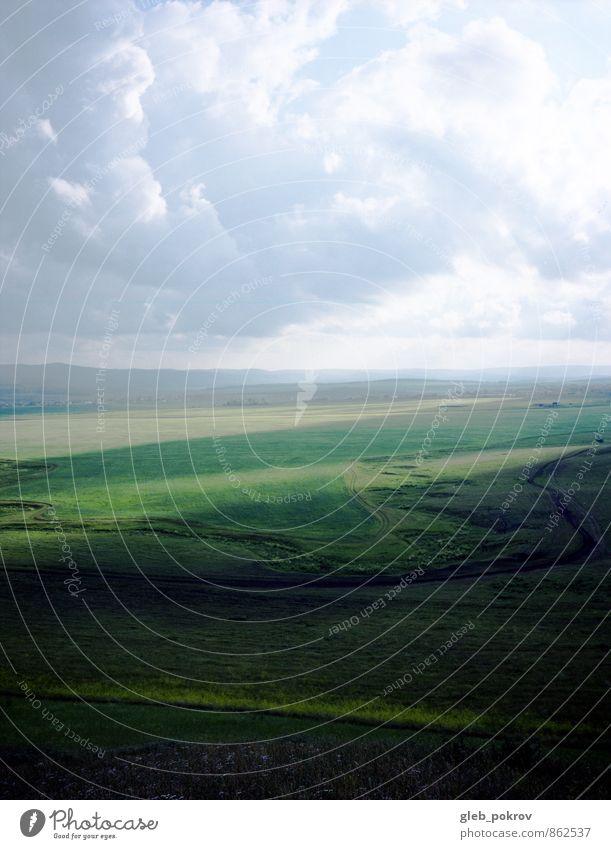 Sibirische Natur Landschaft Erde Wolkenloser Himmel Gewitterwolken Horizont Sommer Wetter Schönes Wetter Wind Gras Feld Fröhlichkeit Optimismus Macht