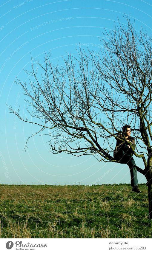 grünblau Himmel Mann Natur Hand Sommer Blatt Auge Wiese Gras Haare & Frisuren lachen Frühling Wärme träumen Beine