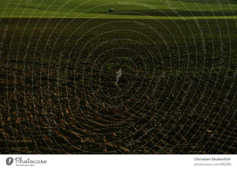 Im Märzen der Bauer grün Wiese Gras braun Feld Traktor