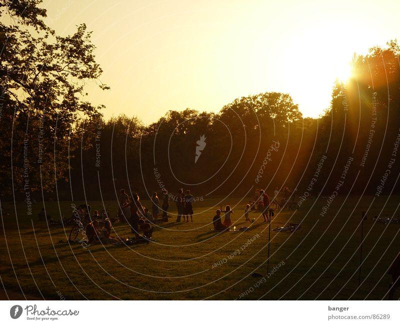 park life Sommer Park Feiertag Sonne Abend Sonnenuntergang Abendsonne Abenddämmerung Menschengruppe mehrere Freizeit & Hobby Feierabend Gegenlicht