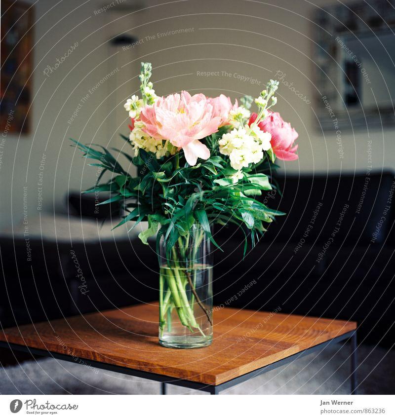 Blumen Lifestyle Stil harmonisch Wohlgefühl Zufriedenheit Häusliches Leben Wohnung Möbel Tisch Raum Wohnzimmer Valentinstag Muttertag Geburtstag Trauerfeier