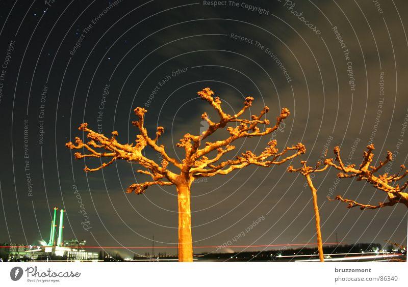 Platane Himmel Wolken Stern (Symbol) Brücke Fabrik Anlegestelle Baumstamm Idee Schornstein Paradies Planet Stromkraftwerke trüb bedecken Rhein Kunstwerk