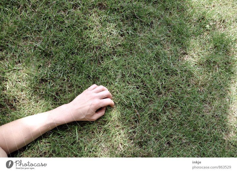 das spiel ist aus Mensch Frau grün Sommer Erholung Hand Erwachsene Leben Gefühle Gras Frühling Spielen liegen Freizeit & Hobby Zufriedenheit Arme