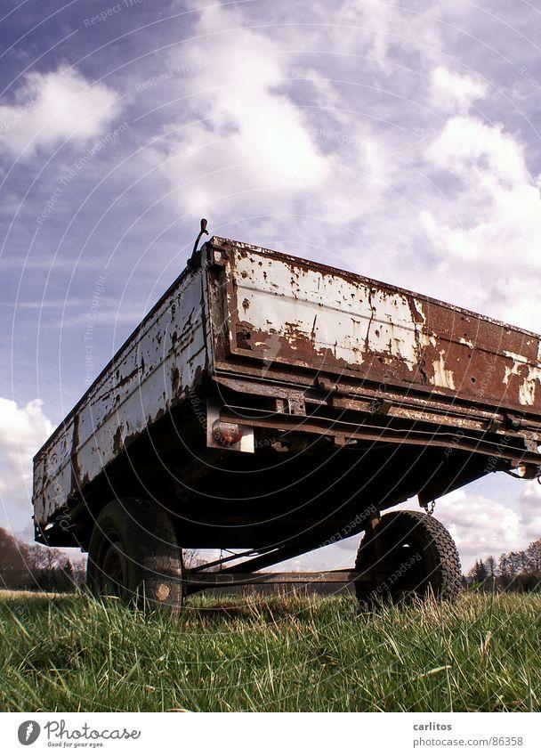 du bist mir zu anhänglich .. losgelöst Scheidung Landhandel sinnlos Landwirtschaft Bauernhof Ackerbau Froschperspektive Wiese Schrott Gras grün nutzlos