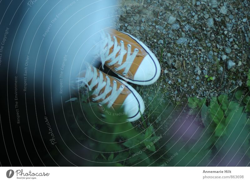 Lieblingsschuhe Schuhe Turnschuh wandern Waldspaziergang Chucks orange Schuhbänder Waldweg Farbfoto Außenaufnahme Textfreiraum links Textfreiraum rechts
