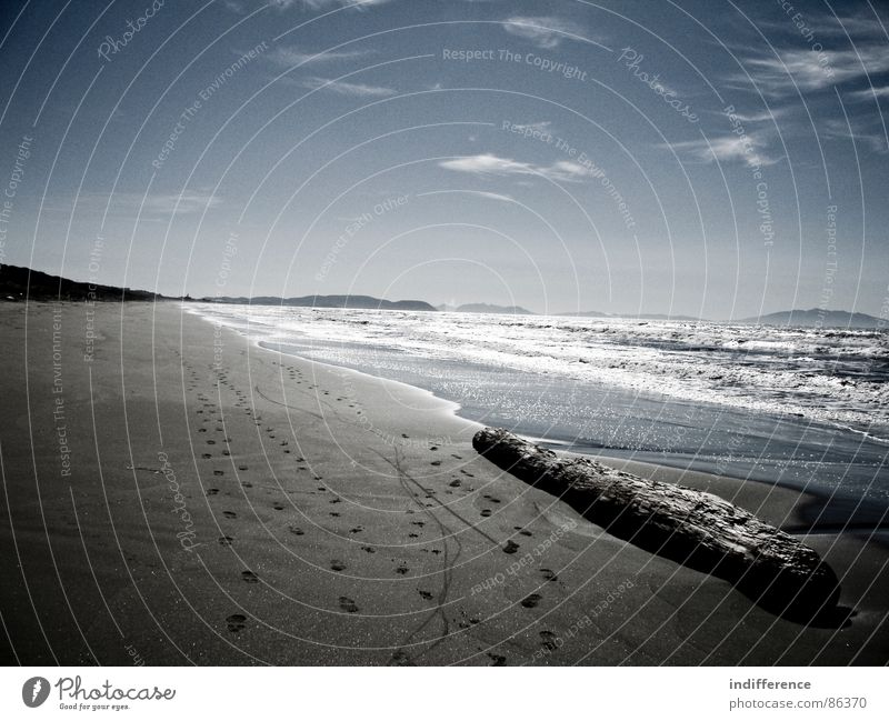 for a better tomorrow Strand Himmel Italien Meer Wasser water sea waves tree landscape Sand blue sky clouds