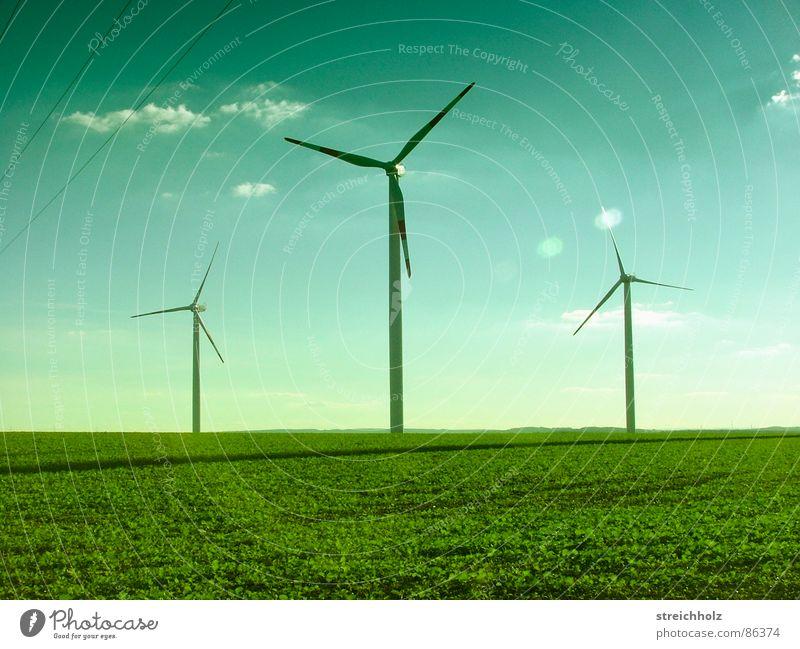 Fortschritsbäume grün Ferne Wiese Gras Hoffnung Rasen Windkraftanlage Qualität Optimismus breit Größe resignieren Waldwiese Reichweite Erneuerbare Energie