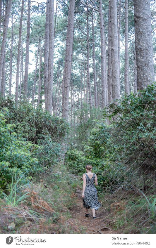 266 [into the WALD] Fitness Ausflug wandern feminin Junge Frau Jugendliche Leben 1 Mensch 30-45 Jahre Erwachsene Natur Landschaft Pflanze Wald Urwald Kleid