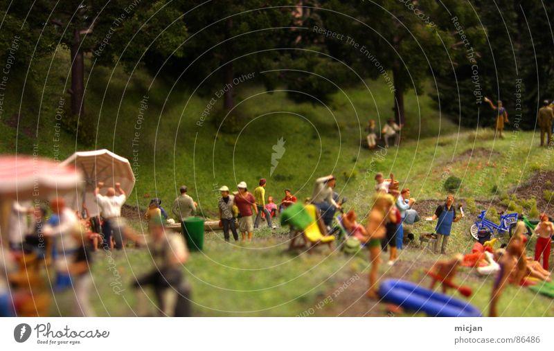 HEUTE: Ein Tag im Wald Mensch Frau Natur Mann grün Sommer Freude Kochen & Garen & Backen Wiese Spielen Frühling klein Menschengruppe Party See
