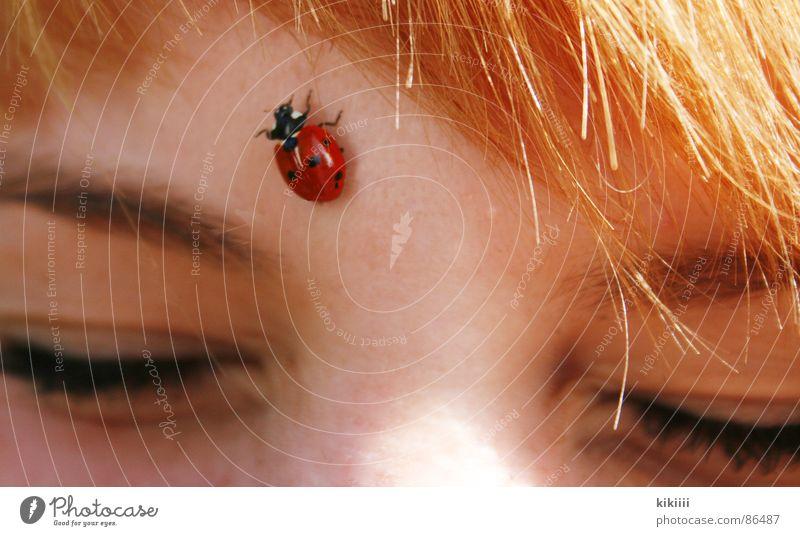 kitzelige angelegenheit Sonne rot Sommer Freude schwarz Auge Frühling Haare & Frisuren Freundschaft braun blond Punkt Selbstportrait Marienkäfer krabbeln Pony