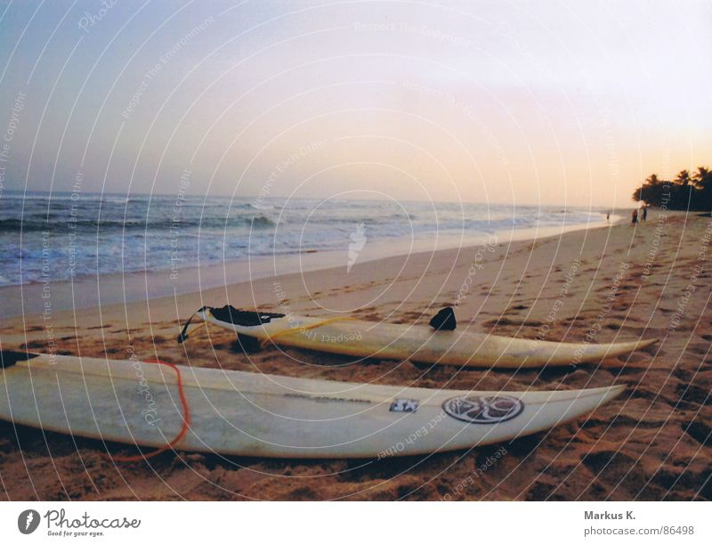 Strandkultur Wasser Sonne Meer Freude Erholung Freiheit Glück Wellen Küste Sturm Surfen genießen Holzbrett Abenddämmerung Brandung