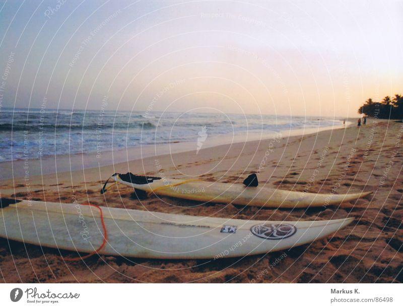 Strandkultur Wasser Sonne Meer Freude Strand Erholung Freiheit Glück Wellen Küste Sturm Surfen genießen Holzbrett Abenddämmerung Brandung