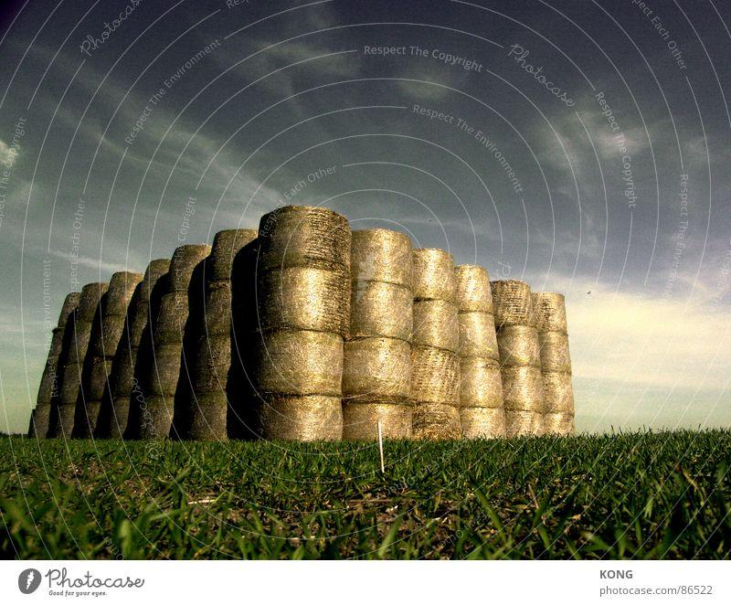 strohburg wuchtig wehrhaft Stroh Strohballen Wiese Feld himmelblau Himmel Mitte Wolken grün groß Landwirtschaft Gemeindeland Ackerbau Vorrat Lager aufbewahren