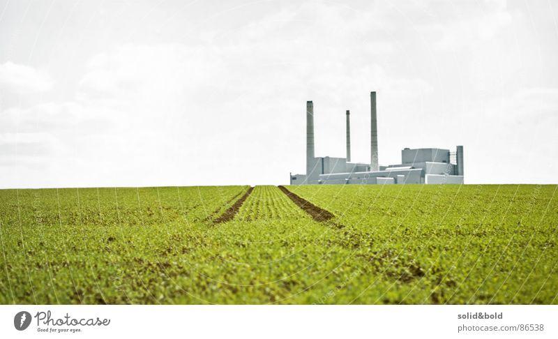 Zurück in die Zukunft Natur grün Einsamkeit Ferne Wiese Gras Wege & Pfade Feld dreckig Umwelt laufen Industrie Zukunft Rasen Fabrik Landwirtschaft