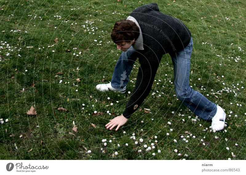 akrobatische Höchstleistung mit Blümchen Natur grün schön Blume Freude Wiese Gras Frühling Blüte lustig Mund verrückt Streifen Schönes Wetter Rasen Weide