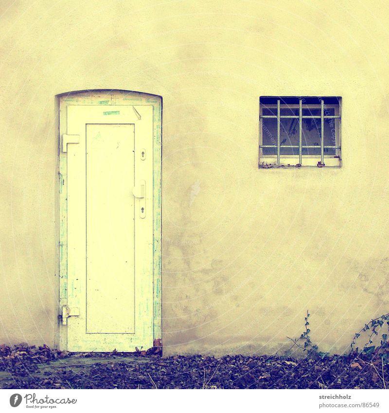 Einmal rein zum Rausgucken Fenster Fassade Kellerfenster Zugabteil Schaufenster Tor Mauer Eingang Türflügel Luke Wandverkleidung Langeweile Häusliches Leben
