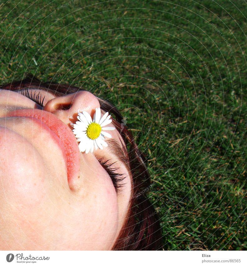 Mhh, Sommer! Frühling Sonnenlicht Gänseblümchen gelb Blume Lippen Kinn geschlossen Nasenloch Nasenspitze Wiese Park Gras niesen Kitzel liegen Sonnenbad Frau