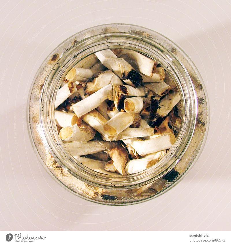 Rauchen als Sammelleidenschaft Freizeit & Hobby Zigarretten Krebstier zigarrettenstummel Tod Ende