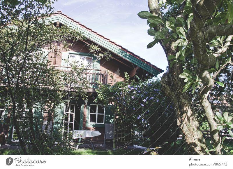 kost.bar | Zuhause Sommer Sommerurlaub Häusliches Leben Traumhaus Garten Holzhaus Landhaus Ferienhaus Terrasse Sträucher Weissdorn Felsenbirne Hibiscus
