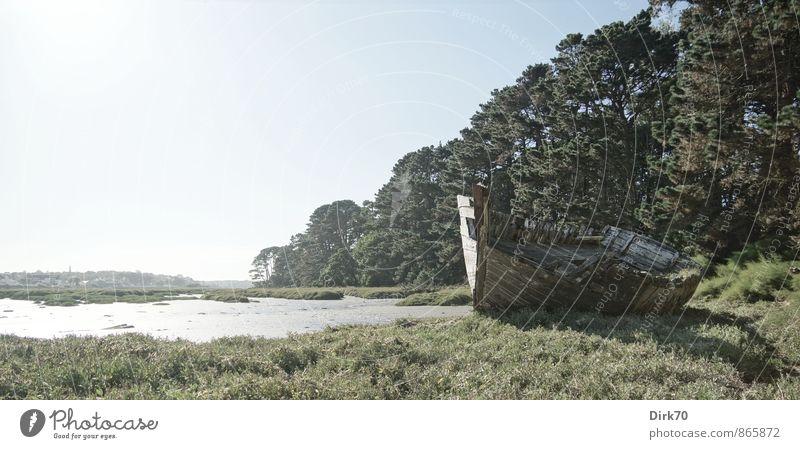 Letzte Ruhestätte blau alt grün Meer Einsamkeit Strand schwarz Wald Traurigkeit Gras Küste Tod grau Holz Idylle kaputt