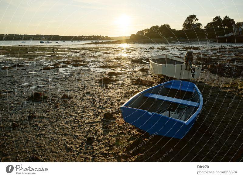 Handbreit Wasser unterm Kiel ... Sonne Sonnenaufgang Sonnenuntergang Sonnenlicht Sommer Schönes Wetter Baum Küste Strand Bucht Meer Atlantik Bretagne
