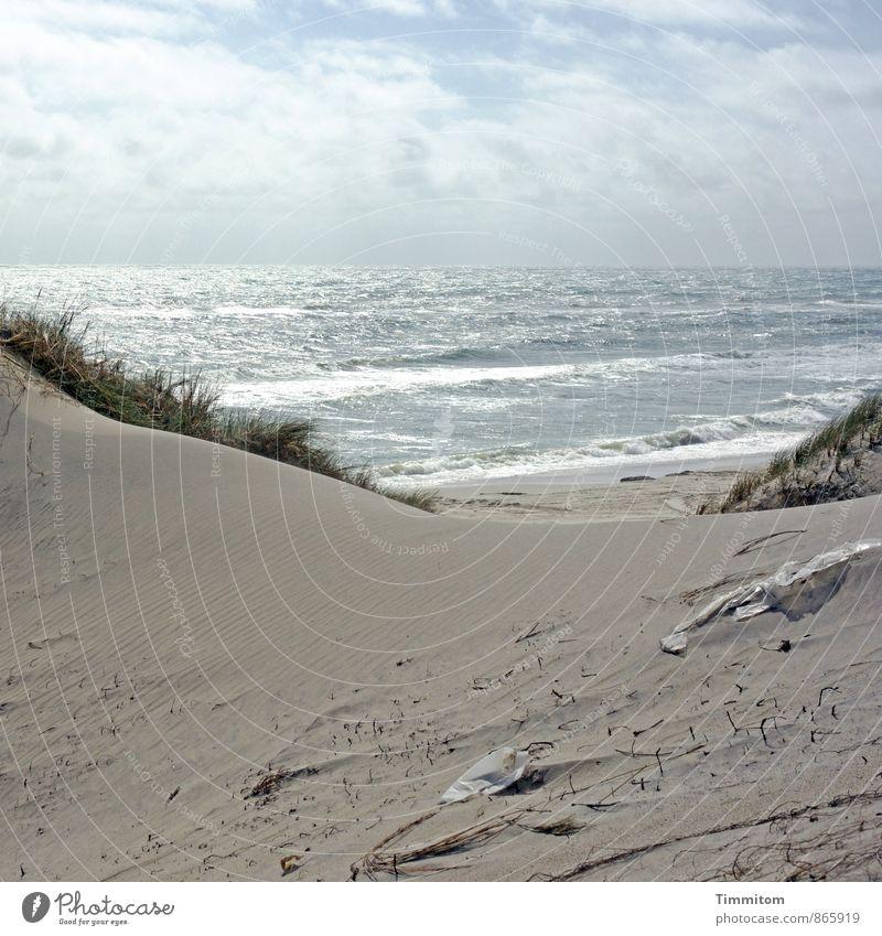 Dreck. Ferien & Urlaub & Reisen Umwelt Natur Landschaft Urelemente Sand Wasser Himmel Sonnenlicht Sommer Schönes Wetter Pflanze Dünengras Wellen Strand Nordsee