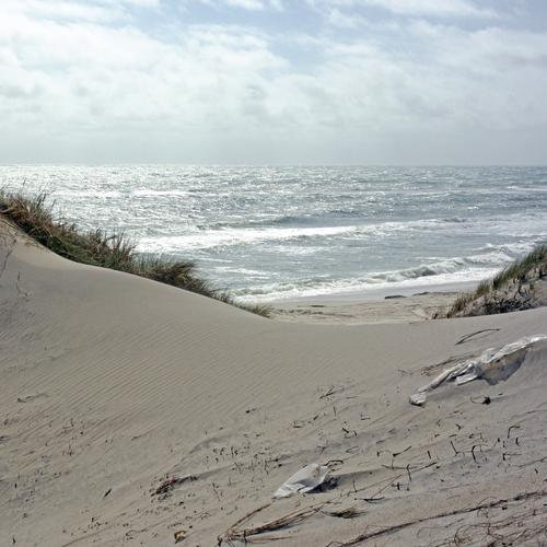 Dreck. Himmel Natur Ferien & Urlaub & Reisen blau Pflanze grün Wasser Sommer Landschaft Strand Umwelt Gefühle grau Sand Wellen ästhetisch