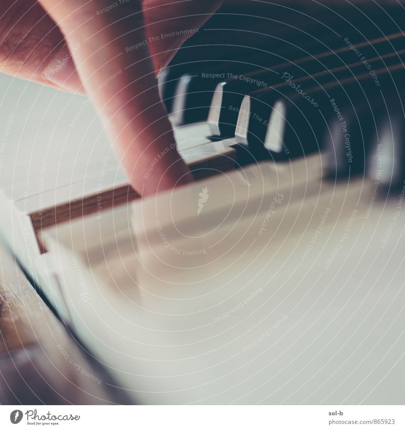 Erholung Spielen Holz Freizeit & Hobby Lifestyle elegant Musik einfach Finger weich berühren zart Bildung Leidenschaft nah hören