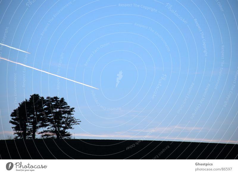 Fly in the Sky!! Himmel schwarz Flugzeug Luftverkehr Blauer Himmel parallel Schattenspiel