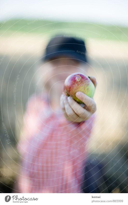 Angebot Lebensmittel Frucht Apfel Ernährung Bioprodukte Freizeit & Hobby Spielen Ausflug Mensch maskulin Junge Kindheit Hand Finger 1 3-8 Jahre Mütze blond