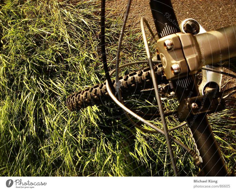 Take a Ride Wiese Mountainbike Reifen grün Kehren Gras Bergsteigen Extremsport mountain GT ride Fahrrad rasenstück Jagd